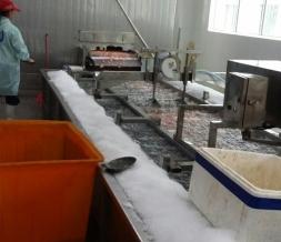 水产冰鲜用片冰机