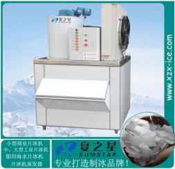 工业片冰机